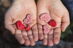 Ręki Trzyma Czerwonych serca Obraz Stock