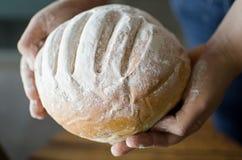 Ręki trzyma domowej roboty kraju chlebowy Obrazy Stock