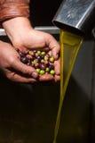 Ręki z oliwkami i nafcianym dolewaniem Zdjęcie Stock
