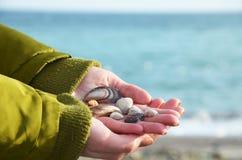 Ręki z seashells na dennym beckground Zdjęcie Royalty Free