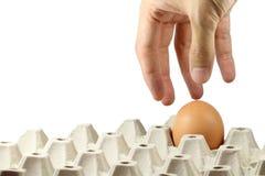 Ręki zrywania jajko w papierowej tacy Zdjęcie Stock
