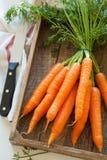 Rå morotgrönsak på träskärbräda Royaltyfri Fotografi