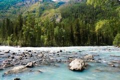 R?o de la monta?a que fluye en el r?o azul de Kucherla del bosque en el parque nacional de Belukha, monta?as de Altai, Siberia, R fotografía de archivo libre de regalías