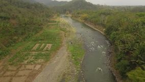 R?o tropical del paisaje, tierra de los granjeros almacen de metraje de vídeo