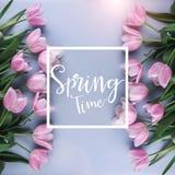 R??owi tulipany kwitn? na r??owym tle Czeka? wiosn? Karta dla wiosna czasu Mieszkanie nieatutowy, odg?rny widok zdjęcie stock