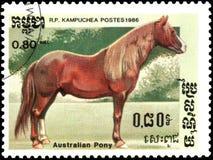 r P CAMBODJA - CIRCA 1986: Een zegel die in R wordt gedrukt P Cambodja toont een Australische Poney Stock Fotografie