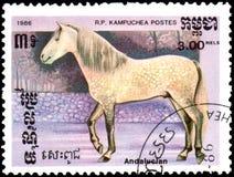 r P CAMBODJA - CIRCA 1986: Een zegel die in R wordt gedrukt P Cambodja toont een $c-andalusisch paard Stock Afbeeldingen