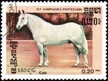 r P CAMBODJA - CIRCA 1986: Een zegel die in R wordt gedrukt P Cambodja toont een Maïskolfpaard Stock Foto
