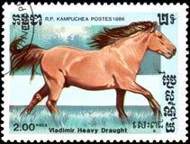 r P CAMBODJA - CIRCA 1986: Een zegel die in R wordt gedrukt P Cambodja toont een Vladimir Heavy Draught-paard Stock Foto