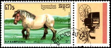 r P CAMBODJA - CIRCA 1989: Een zegel in R wordt gedrukt dat P Cambodja toont een Brabant paard, reeksrassen paarden Stock Afbeeldingen