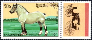 r P CAMBODJA - CIRCA 1989: Een zegel in R wordt gedrukt dat P Cambodja toont een Bretons Paard, reeksrassen paarden Royalty-vrije Stock Foto