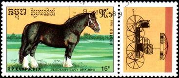 r P CAMBODJA - CIRCA 1989: Een zegel in R wordt gedrukt dat P Cambodja toont een Vladimir Heavy Draught-paard Royalty-vrije Stock Fotografie