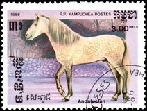 R.P. KAMPUCHEA - CIRCA 1986: A stamp printed in R.P.Kampuchea shows a Andalusian horse Stock Images
