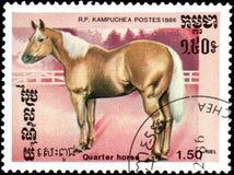 r P LA KAMPUCHEA - CIRCA 1986: Un bollo stampato nella R P La Kampuchea mostra un cavallo quarto Immagini Stock