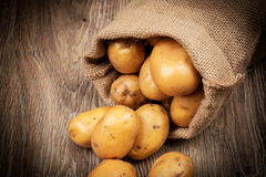 Rå potatisar i säcken Arkivbilder