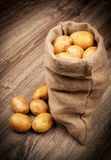 Rå potatisar i säcken Royaltyfri Fotografi