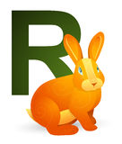 R for Rabbit Royalty Free Stock Image