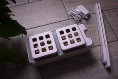 R roślinę w domu Dodatek specjalny puszkuje dla narastających ziele, rośliny, kwiaty w domu Szczegóły i makro- photography//, w g zdjęcia stock
