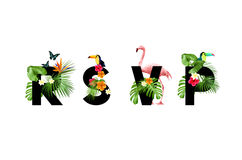 Free R.S.V.P Tropical Card Stock Photography - 89026332