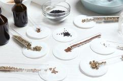 r Sort de divers genres de graines avant l'essai à la table du scientifique photographie stock libre de droits
