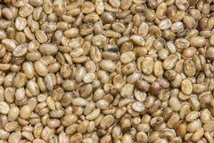 Rôti de graine de café pas Photographie stock libre de droits