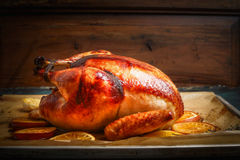 Rôtissez la dinde ou le poulet entière au-dessus du fond en bois Images libres de droits