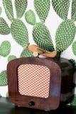 R?tro avion en bois de jouet sur la table avec le fond de cactus image libre de droits