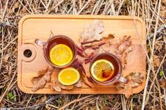 R?tt te med citronen i exponeringsglas r?nar p? naturen royaltyfria bilder