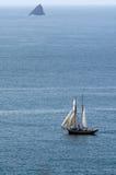R.Tucker汤普森风帆运送在海岛新西兰海湾  图库摄影