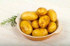R? ung potatis arkivfoto