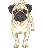 Raça bonito do pug do cão do esboço do vetor ilustração royalty free