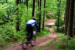 Raça da bicicleta Fotografia de Stock Royalty Free