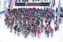 Raça da visita do esqui Fotos de Stock Royalty Free