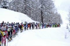 Raça da visita do esqui Fotografia de Stock