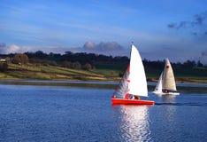 Raça de barco da navigação Imagens de Stock Royalty Free