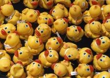 Raça de borracha do pato Fotografia de Stock Royalty Free
