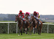 Raça de cavalo 06 Imagens de Stock Royalty Free