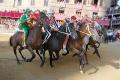 Raça de cavalo do palio de Siena Imagem de Stock