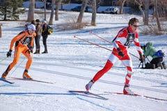 Raça de esqui através dos campos Imagens de Stock Royalty Free