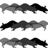 Raça de rato ilustração stock