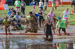 "raça do movimento Pollywog do 21th †anual de Marine Mud Run de "" Fotos de Stock"