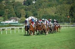 Raças de cavalo em Deauville Imagem de Stock