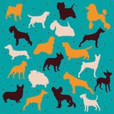Raças do cão do vetor Foto de Stock Royalty Free