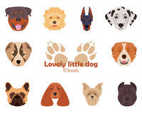 Raças do puro-sangue dos cães, ícones Ilustração do vetor ilustração do vetor