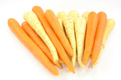 Raíces de las pastinacas y de las zanahorias. Foto de archivo libre de regalías