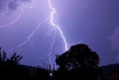 Raíces del aligeramiento en el árbol cercano llamativo de la noche Imagen de archivo