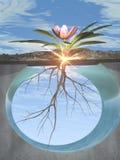 Raíces y crecimiento libre illustration