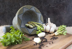 Raíz del ajo, de la pimienta y del coriandro Imagen de archivo