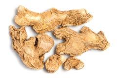 Raíz seca del jengibre (officinale del Zingiber) Fotografía de archivo libre de regalías