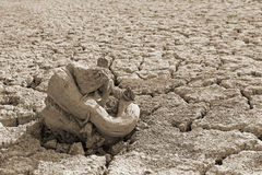 Raíz seca en el suelo secado, sepia del árbol Foto de archivo